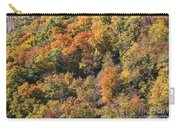 Connecticut Fall Color Carry-all Pouch