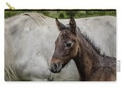 Connemara Foal Carry-all Pouch