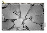 Conservatory Nature In Black And White 1 Carry-all Pouch