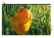Contemporary Orange Poppy Flower Unfolding In Sunlight 10 Baslee Troutman Carry-all Pouch
