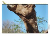 Contemptuous Camel Carry-all Pouch