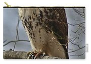 Cooper's Hawk 2 Carry-all Pouch