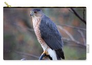 Coopers Hawk In Autumn Carry-all Pouch