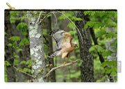Coopers Hawk In New Hampshire Carry-all Pouch