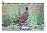 Copper Pheasant Carry-all Pouch