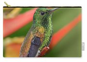 Copper Rumped Hummingbird Carry-all Pouch