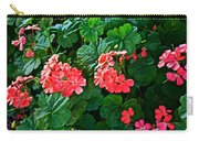 Coral Geraniums At Pilgrim Place In Claremont-california   Carry-all Pouch