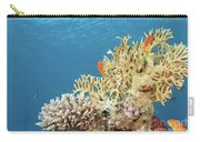 Coral Reef Eco System Carry-all Pouch
