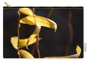 Corkscrew Willow Carry-all Pouch
