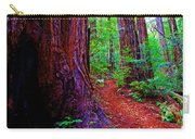 Cosmic Redwood Trail On Mt Tamalpais Carry-all Pouch
