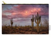 Cotton Candy Pink Sonoran Sunrise  Carry-all Pouch