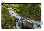 Cottonwood Falls Carry-all Pouch