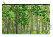 Cottonwood Grove Carry-all Pouch by Will Borden