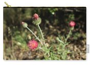 Coulter's Thistle Carry-all Pouch