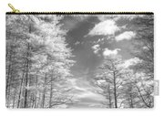 Covered Bridge Dupont North Carolina Carry-all Pouch
