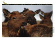 Cow Elk At Hardware Ranch Carry-all Pouch