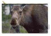 Cow Moose-signed-#4036 Carry-all Pouch