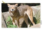 Coyote Grin Carry-all Pouch