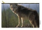 Coyote In Ocotillo Trees Carry-all Pouch