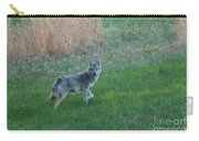 Coyote Stance  Carry-all Pouch
