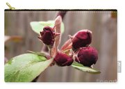 Crab-apple Tree Flower Buds Carry-all Pouch