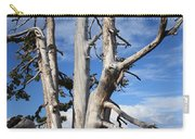 Crater Lake Tree Carry-all Pouch