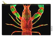 Crawfish In The Dark - Rouillegreen Carry-all Pouch