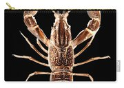 Crawfish In The Dark - Sepia Carry-all Pouch