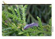 Crawlly Caterpillar Carry-all Pouch