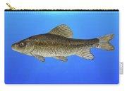 Creek Chubsucker Blue Lagoon  Carry-all Pouch