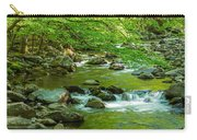 Creek In Great Smoky Mountains National Carry-all Pouch