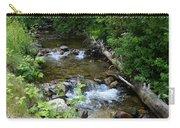 Creek On Mt. Spokane 1 Carry-all Pouch