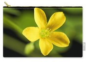 Creeping Woodsorrel Square Carry-all Pouch