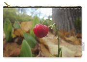 Crimson Berry Carry-all Pouch