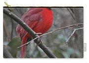 Crimson Cardinal Carry-all Pouch
