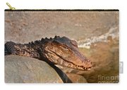 Croc Carry-all Pouch
