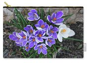 Crocus 6675 Carry-all Pouch