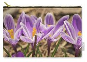 Crocuses 2 Carry-all Pouch