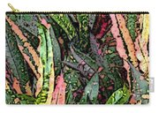 Croton 3 Carry-all Pouch by Eikoni Images