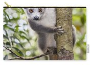 Crowned Lemur Madagascar Carry-all Pouch
