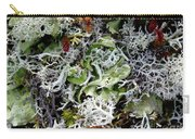 Crushed Lichen Carry-all Pouch
