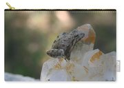 Crystal Frog Carry-all Pouch