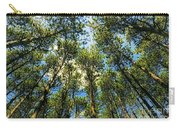 Crystal Lake Il Pine Grove And Sky Carry-all Pouch