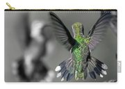 Cumberland Gap Hummingbirds Carry-all Pouch