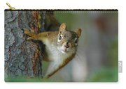 Curious Alaskan Red Squirrel Carry-all Pouch