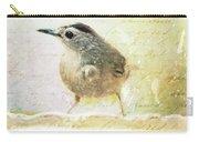 Curious Catbird Carry-all Pouch