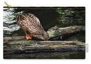 Curious Duck Carry-all Pouch