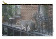 Curious Gray Squirrel  Carry-all Pouch