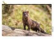 Curious Mink Carry-all Pouch