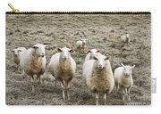 Curious Sheep Carry-all Pouch